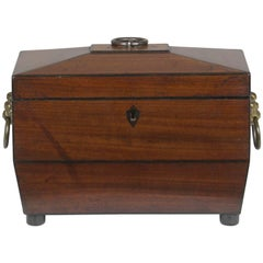 Regency Sarcophagus Shaped Tea Chest