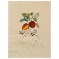 Salvador Dali Apple, Pomme Dragon, Eve's Apple, Dragon Apple