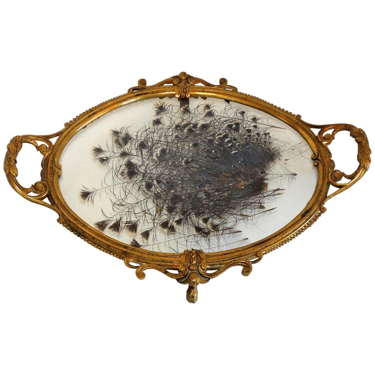 French Etched Bronze Centerpiece Tray with Pressed Feather Glass Insert Center