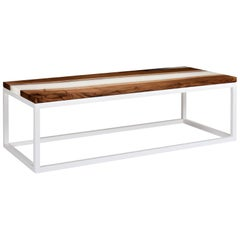 Contemporary Coffee Table with Walnut Top and Resin on Powder Coated Steel Base