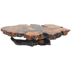 Burlwood and Resin Coffee Table