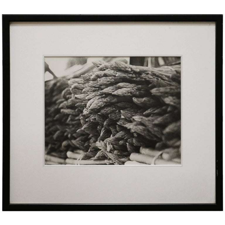 Fine Art Photograph of a Bunch of Asparagus
