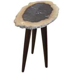 Andrianna Shamaris Palm Petrified Wood Side Table