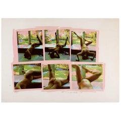 Carolee Schneemann Original Kinetic Feminist Art, 1979, Pink, Green 151/250