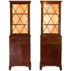 Pair of George III Style Mahogany Collection Cabinets