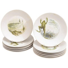 12 French Hand-Painted Frog Plates by Marcel Guillot