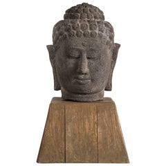 Southeast Asian Volcanic Stone Bust of Buddha