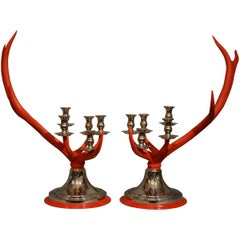 Anthony Redmile Scottish Stag Red Deer Antler Candlesticks