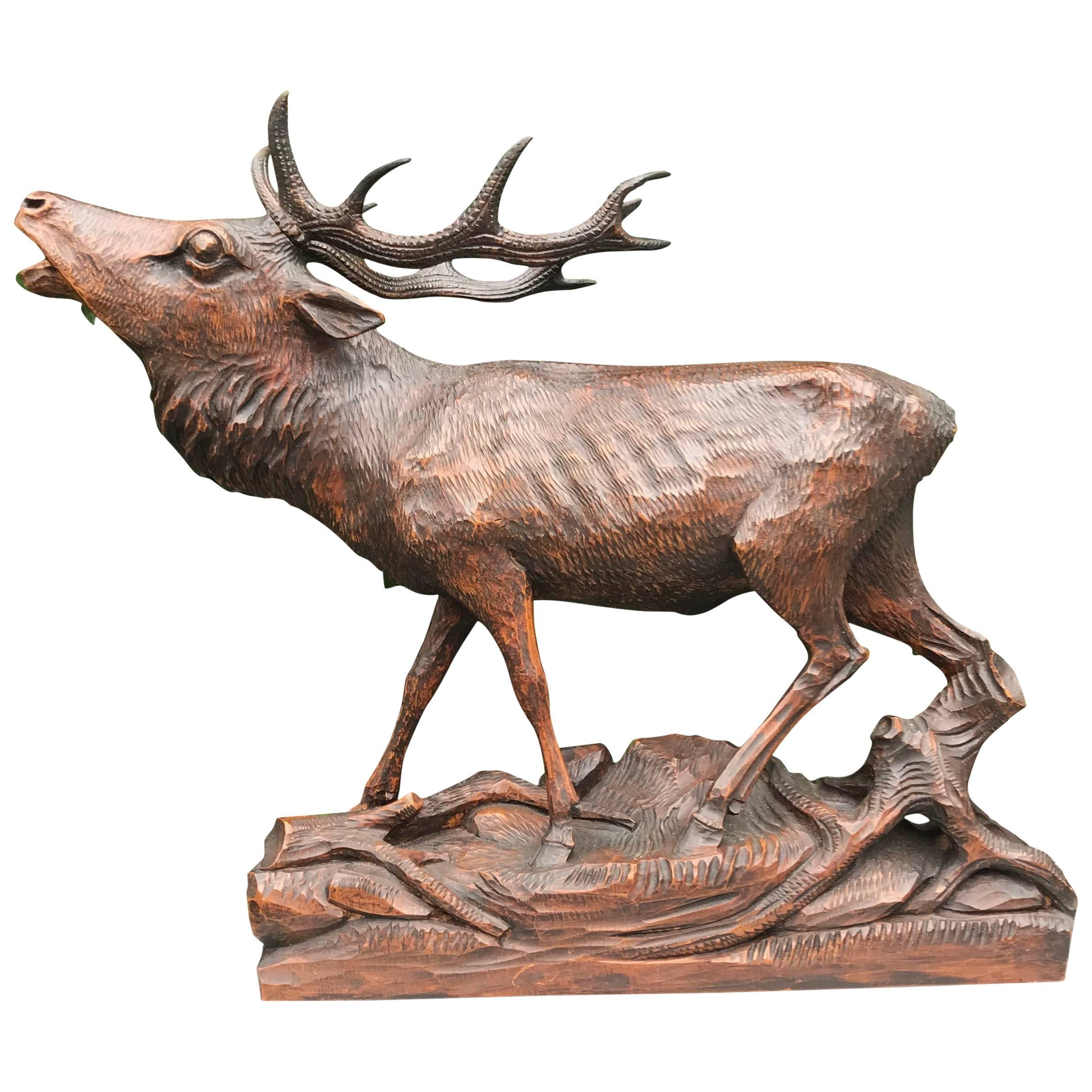 Early 1900 Large Black Forest Fine Carved Burling Stag / Deer Sculpture Statue