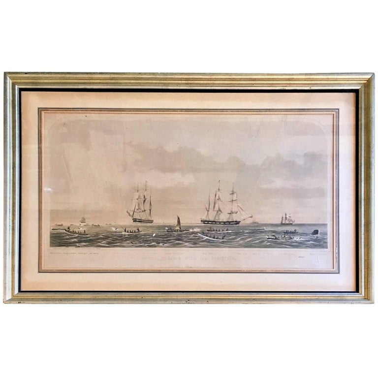 19th Century Colored Lithograph of Sperm Whaling with Its Varieties, 1870 For Sale