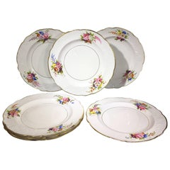 Set of Seven Spode  Dinner Plates, Flower Moulded Border, Daniel Decorated