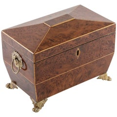 French Directoire Period Thuya Wood Tea Box with Lemonwood Inlay and Bronze Feet