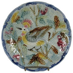 Early Majolica Exotic Bird Plate