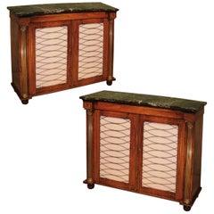 Regency period rosewood 2-door chiffoniers