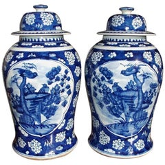 Pair of Chinese Porcelain Glazed Temple Jars with Lids, 20th Century