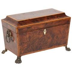 English Georgian Period Burwood Tea Caddy