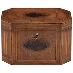 Antique Georgian Harewood Tea Caddy with Blackthorn Oysters, 18th Century