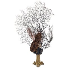 Odysśee de la Mer Coral Quartz Sea Fan Bronze Sculpture