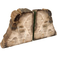 Pair of 1950s Petrified Wood Bookends
