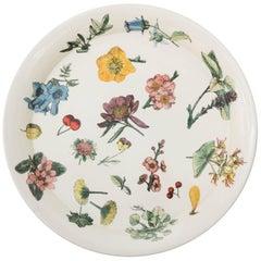 Piero Fornasetti metal tray with flora on a white background, Italy, circa 1950