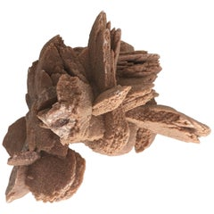 Desert Rose Selenite Crystal Formation