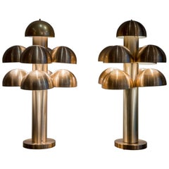 "Pair of ""Cantharelle"" Table Lamps by RAAK"