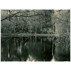 Joanne Fielder, Kuon I, 2017, Photograph Film Archival Pigment Print