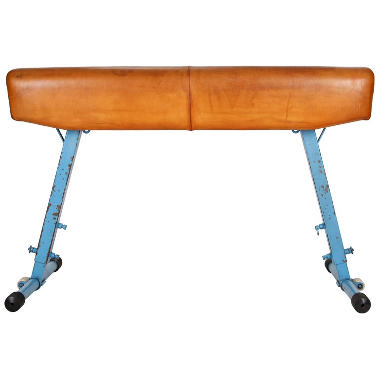 Gym Leather Horse from Artis, 1960s For Sale