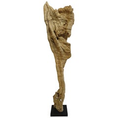 Natural Teak Wood Root Sculpture
