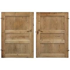 Pair of Primitive Doors from Sweden, circa 1820