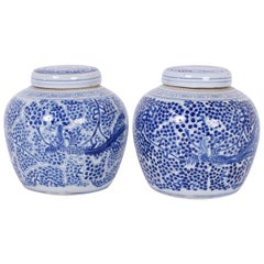 Pair of Chinese Export Style Blue and White Porcelain Ginger Jars