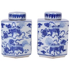Pair of Chinese Export Style Blue and White Porcelain Tea Leaf Jars