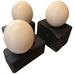 Three Ostrich Eggs on Decorative Wood Blocks