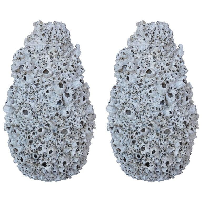 Pair of Coral Vases