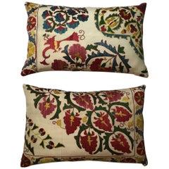Pair of Suzani Pillow
