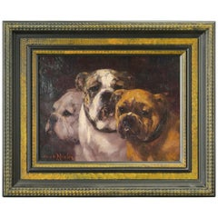 Study of Three Bulldogs, Oil on Canvas,  19th Century