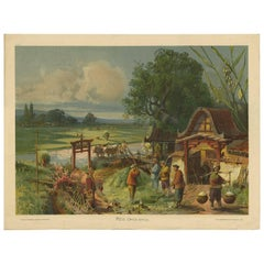 Antique Print 'Schoolplate' of a Rice Field by F.E. Wachsmuth, circa 1900