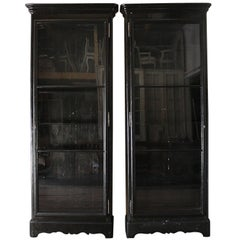 Large European Ebony Lacquered Display Cabinet