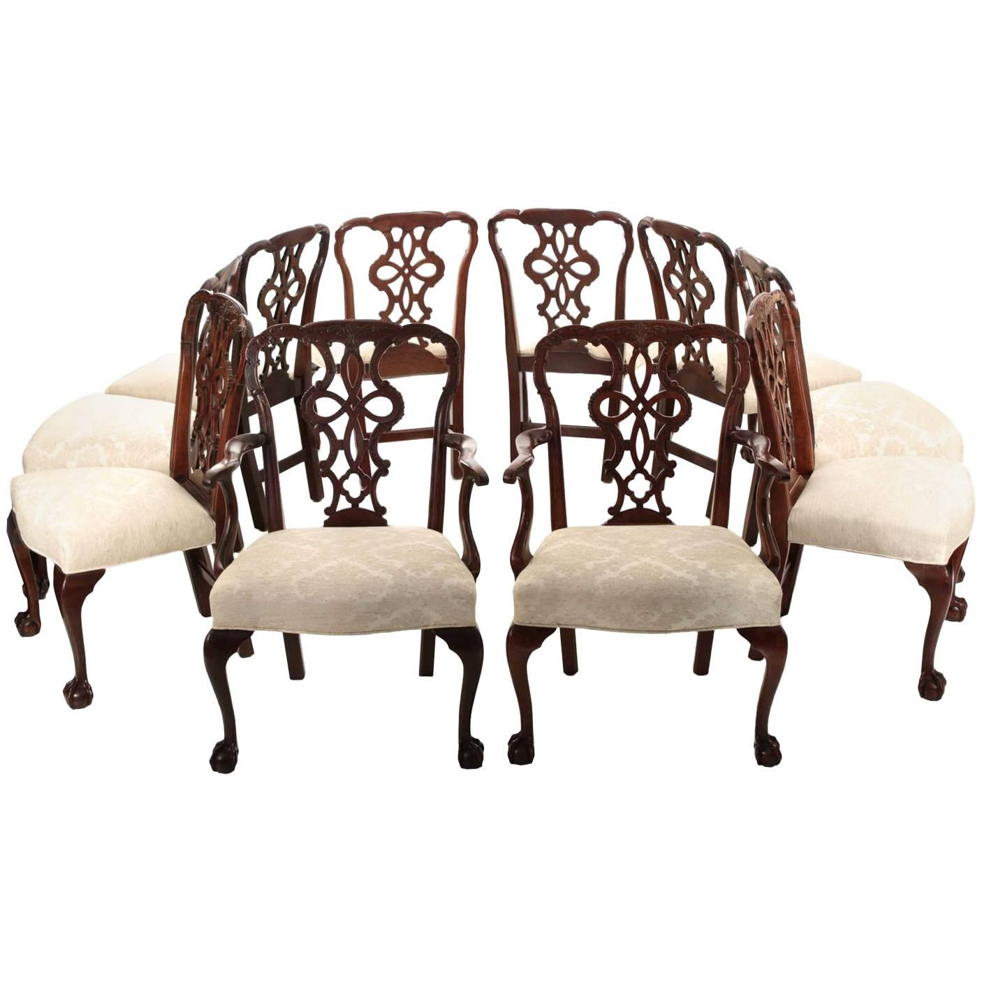 set of ten chippendale style carved mahogany ball and claw dining chairs