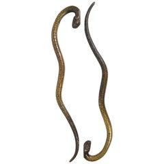 19th Century Bronze Snake Door Handles or Pulls
