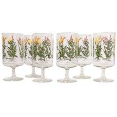 Neiman-Marcus Botanical Glasses, Set of Six