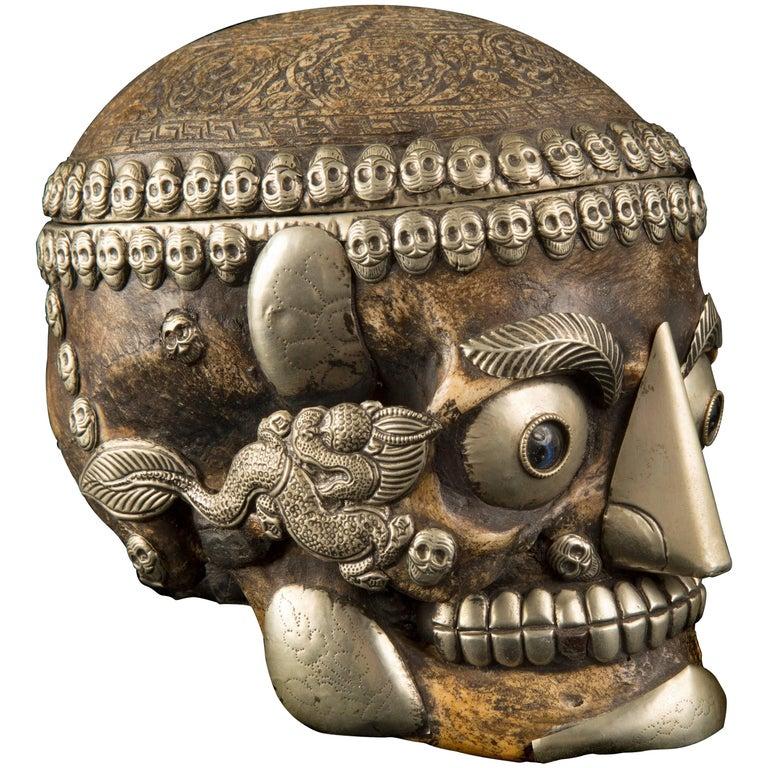 Tibetan Human Skull Kapala For Sale At 1stdibs