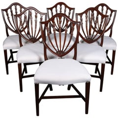 Federal Carved Mahogany Upholstered Shield Back Dining Chairs, 20th Century