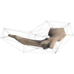 Crust of the Polygon 01 Norihiko Terayama Driftwood Sculpture