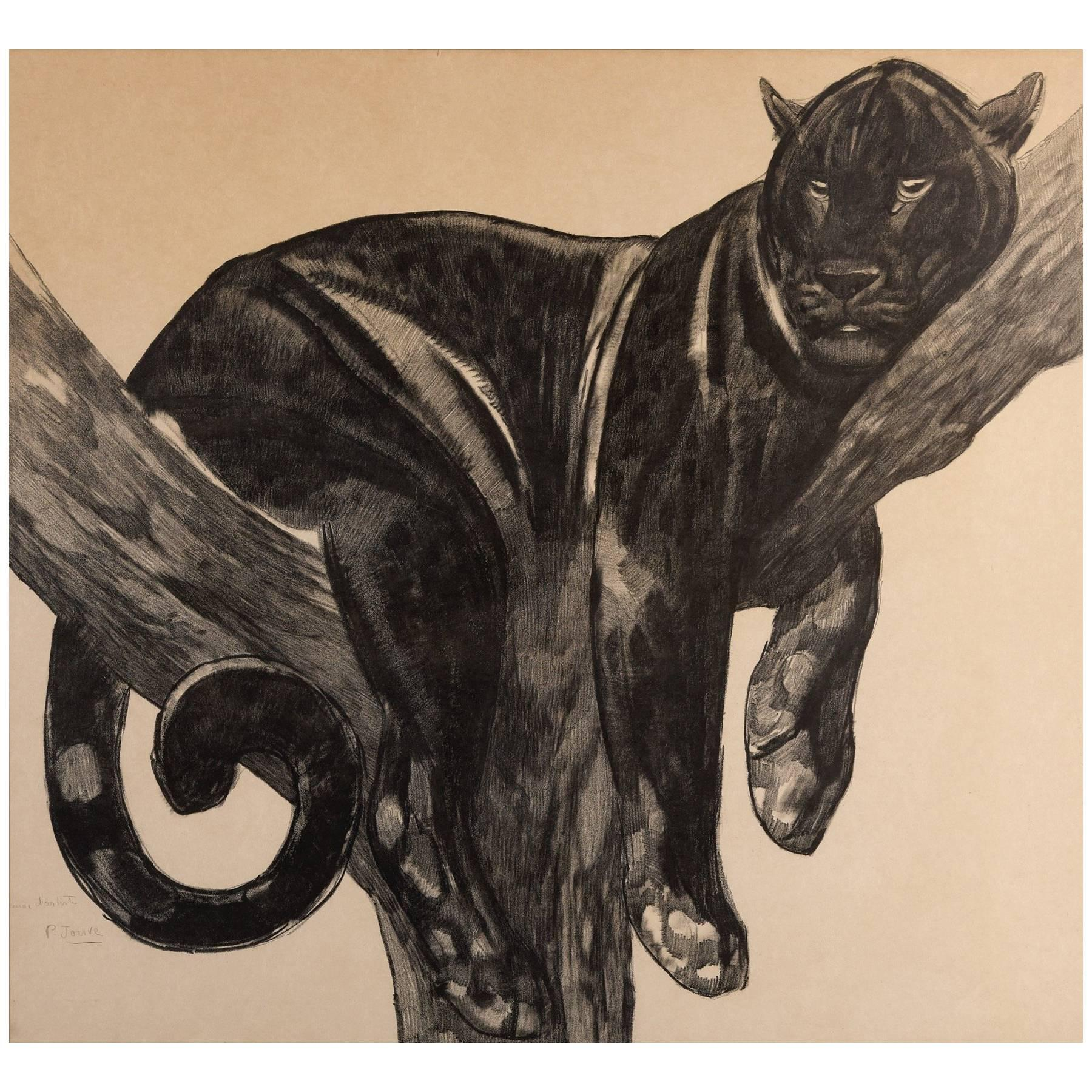 Panther on a Branch, Original Lithograph by Paul Jouve, circa 1927