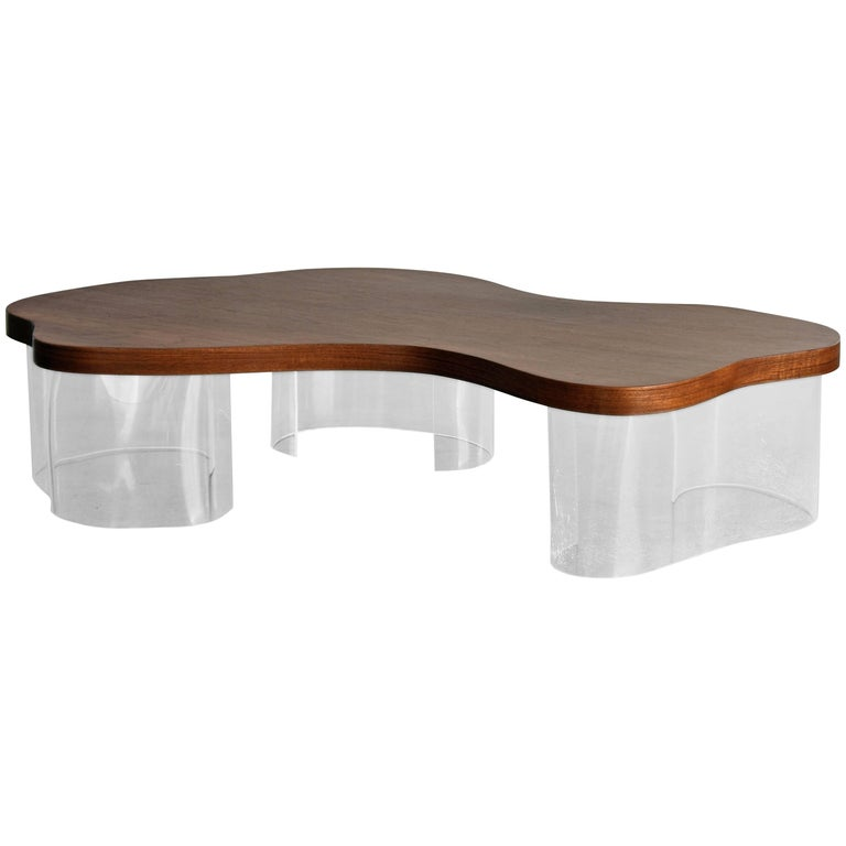 Organic Coffee Table in Walnut and Lucite, American Design, circa 1950s