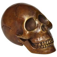 Memento Mori Bronze Statue of a Human Skull