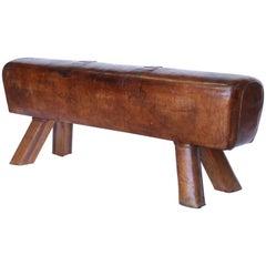 Vintage Leather Pommel Horse