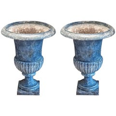 Pair of Medici Urns with New Paint