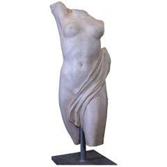 Roman Marble Torso, 20th Century